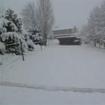 paddock invernali